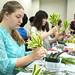 <p>Learning ikebana, the Japanese art of flower arranging, at Nippon Culture Day.</p>