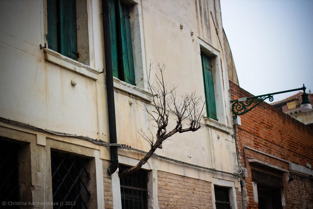 Venice [3]