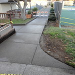 ADA Compliance Concrete In Davis