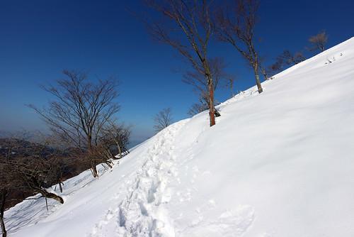 霊仙山登る