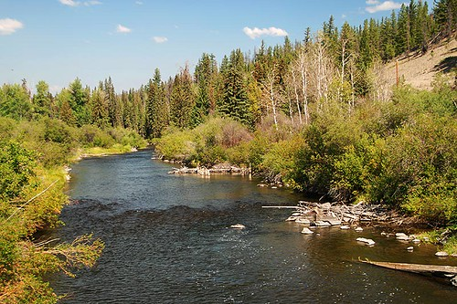 Chilcotin River near Chilanko Forks, Chilcotin Plateau, Chilcotin, British Columbia, Canada