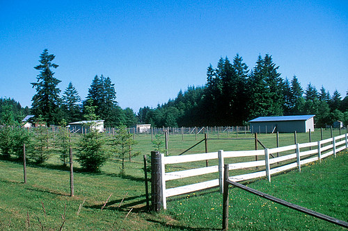 Farm in Black Creek, Vancouver Island, British Columbia, Canada