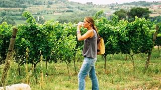 Bebiendo entre viñedos.