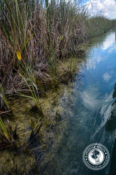 Sian Ka'an National Park - A Journey Down Ancient Mayan Canals