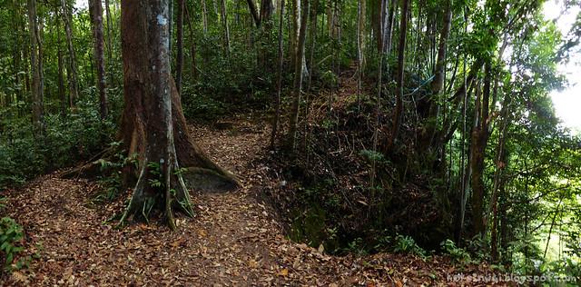 Santubong 02 Bukit Putri Trail