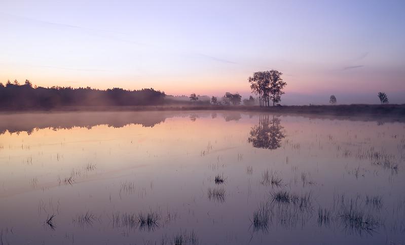 Strabrechtse Heide 202