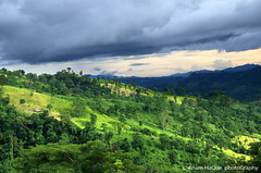 Beauty of hill top