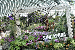 Singapore Stories Floral Display