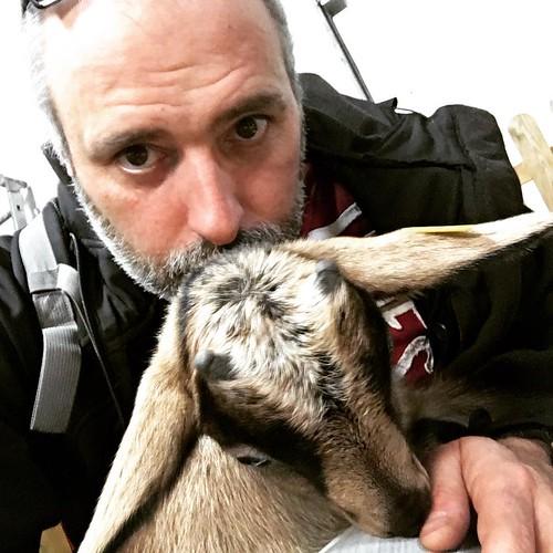 #chèvre #bébé #france #moi #lyon #cool #drôle #nourriture #bio