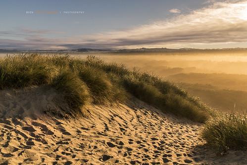 mist fog oregon sunrise landscape dawn sanddunes