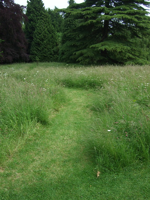 044 mad meadow path