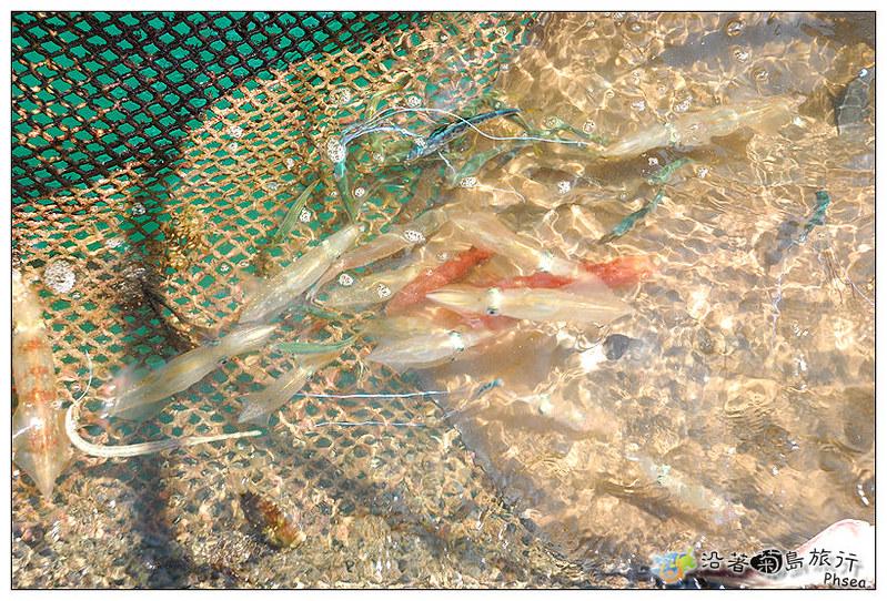 2013元貝休閒漁業_37