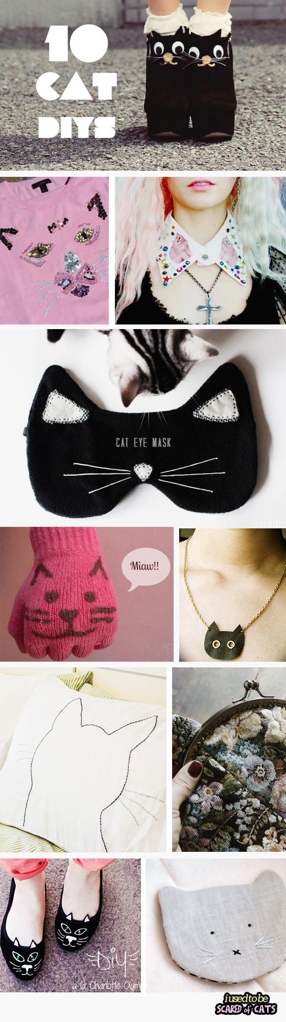 top 10 cat diys