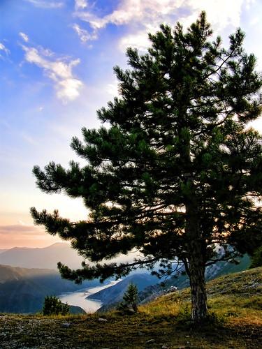 sunset sunlight lake tree pinetree pine clouds europe v100 dusk macedonia gradient rays kozjak treesillouettes