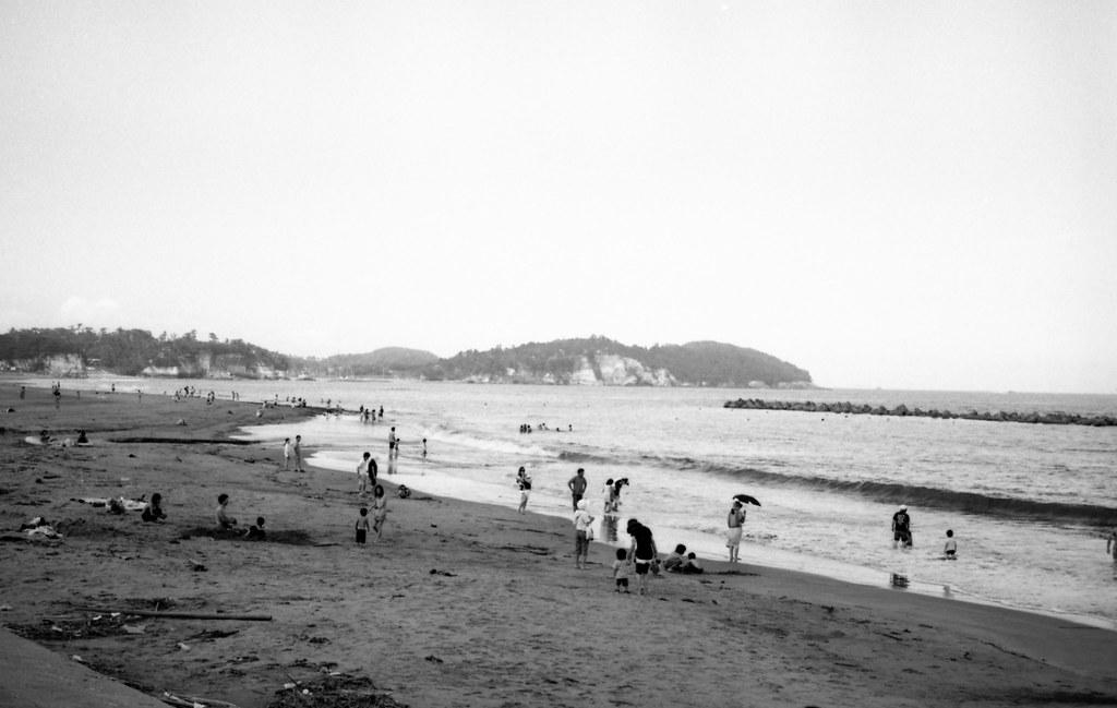 菖蒲田の夏