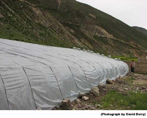 Greenhouse Outside