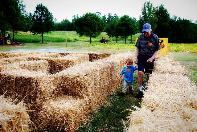 ganyard hill farm pumpkin patch