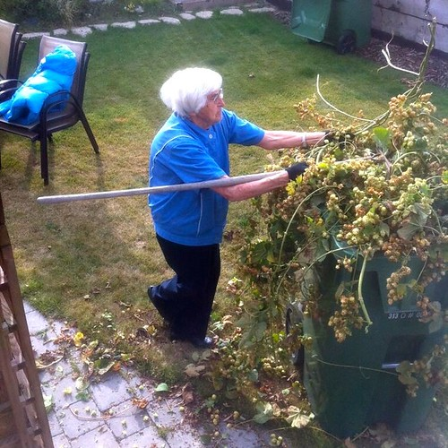 Grandma working