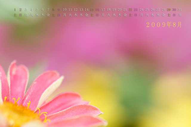 写真_「2009年8月カレンダー」