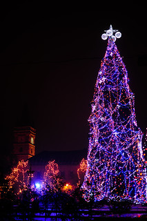 Baia Mare's Christmas Tree