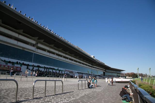 20131130 中山競馬場 / Nakayama R.C.