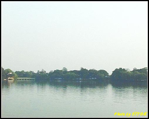 杭州 西湖 (其他景點) - 313 (在西湖十景之 花港觀魚 看花港觀魚及蘇堤)