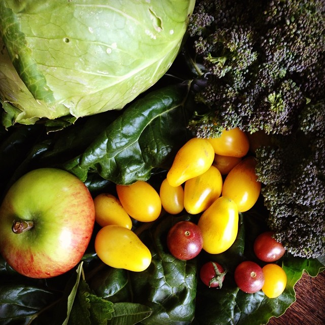 Today's harvest #accidentalabundance #permaculture #heirloomapplesandtoms #growyourown