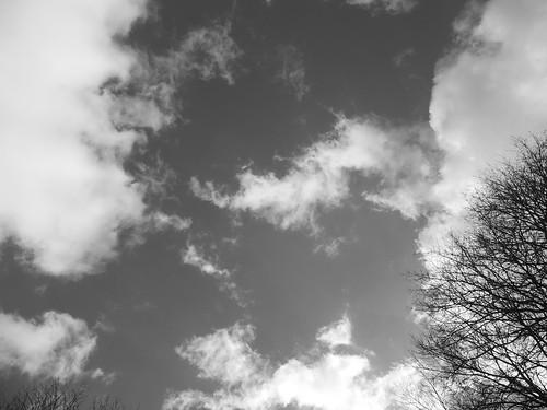sunset ohio sun white black tree monochrome clouds