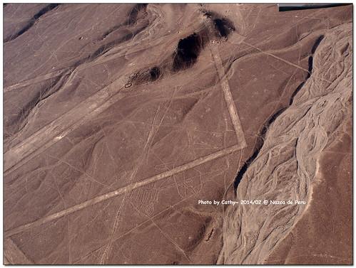 Nazca-16