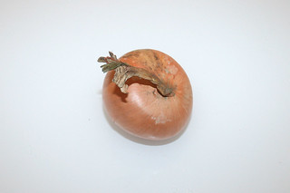 03 - Zutat Zwiebel / Ingredient onion