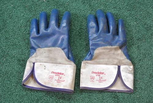 gloves DSC_1978