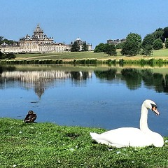 #castlehoward#house #castle#building#history#countryside#grass#green#water#lake#bird#sky#rsa#royalsnappingartists#yorkshire#england