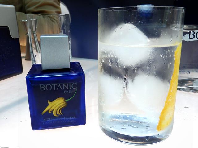 Gin tonic de Botanic