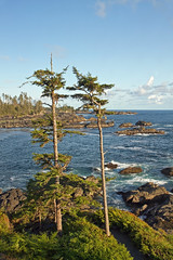 Ucluelet, BC - View from the Black Rock Resort