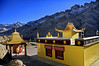 Yellow against the Barren Stark Brown of the Tethys Sea at Buddhakharbu in Ladakh.