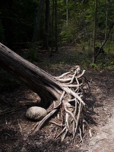 marr-lake-trail-00
