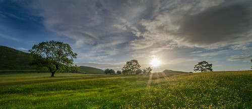 summer sunrise derbyshire peakdistrict nationaltrust peakdistrictnationalpark dovedale