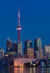 Toronto Cranes