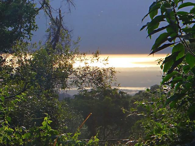 Maiala Park Sunrise