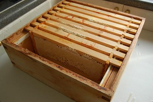 hive frames July 13