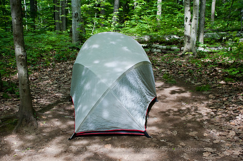 The Single Tent