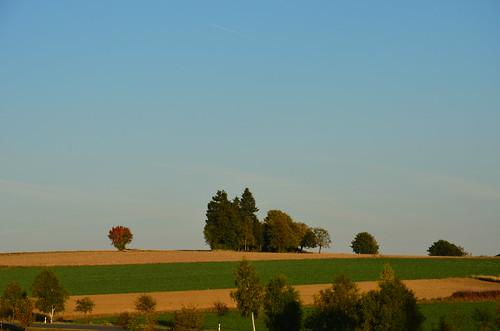 Kulturlandschaft im Herbst