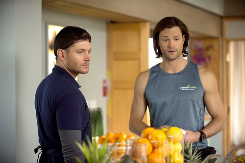 "Recap/review of Supernatural 9x13 ""The Purge"" by freshfromthe.com"