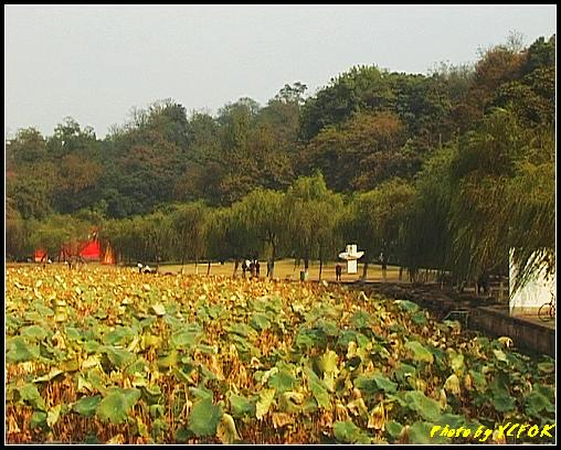 杭州 西湖 (其他景點) - 219 (白堤上的孤山 孤山公園)