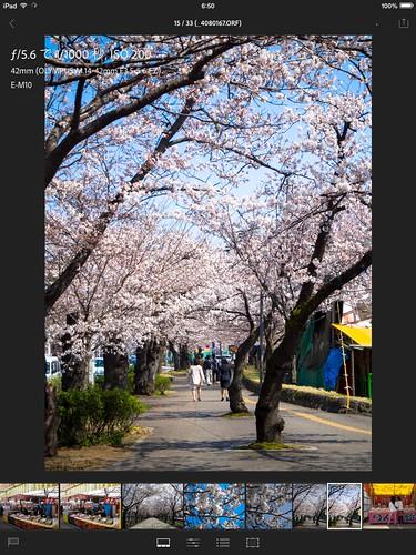 写真 2014-04-09 6 50 14