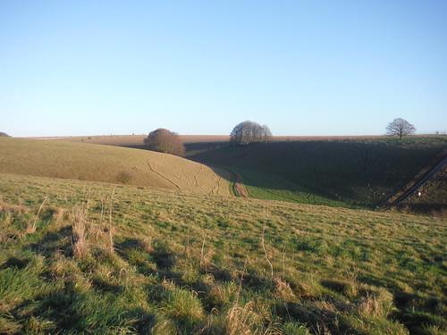 Unnamed Coombe, off American Road, Salisbury Plain