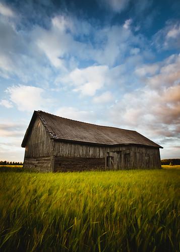 summer nature field barn suomi finland evening sony tokina ilta lato a900 kes㤠oripã¤ã¤