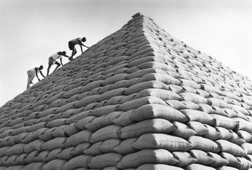 paticheri_groundnutpyramids (4)