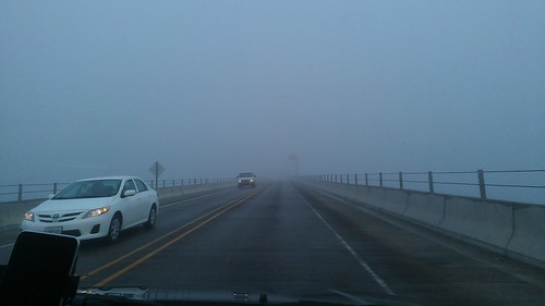 Wooooo fog! by christopher575