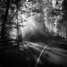 Road by Jontxu Fernandez